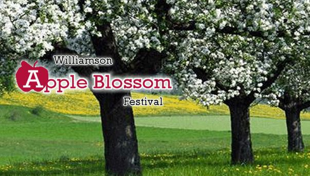 williamsonapplefestival.com